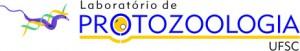 logo_proto_transparent_print_jpeg-300x51