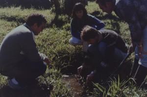 1987 Sao Francisco do Sul - Coleta de Biomphalaria spp.