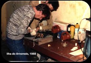 MIP, 1988 - Lab. Protozoologia, Ilha do Arvoredo