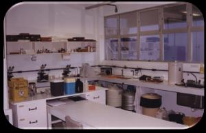 MIP, 1997 - Lab. Protozoologia